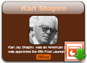 the meaning of life and death in auto wreck by karl shapiro Shapiro s auto wreck term paper while the free essays can give you inspiration for writing, they cannot be used 'as is' because they will not few subjects can be discussed with more insightfulness and curiosity than death the unpredictability and grimness of it are conveyed well in karl shapiro's.
