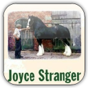 Quotations by Joyce Stranger
