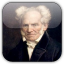 Quotations by Arthur Schopenhauer